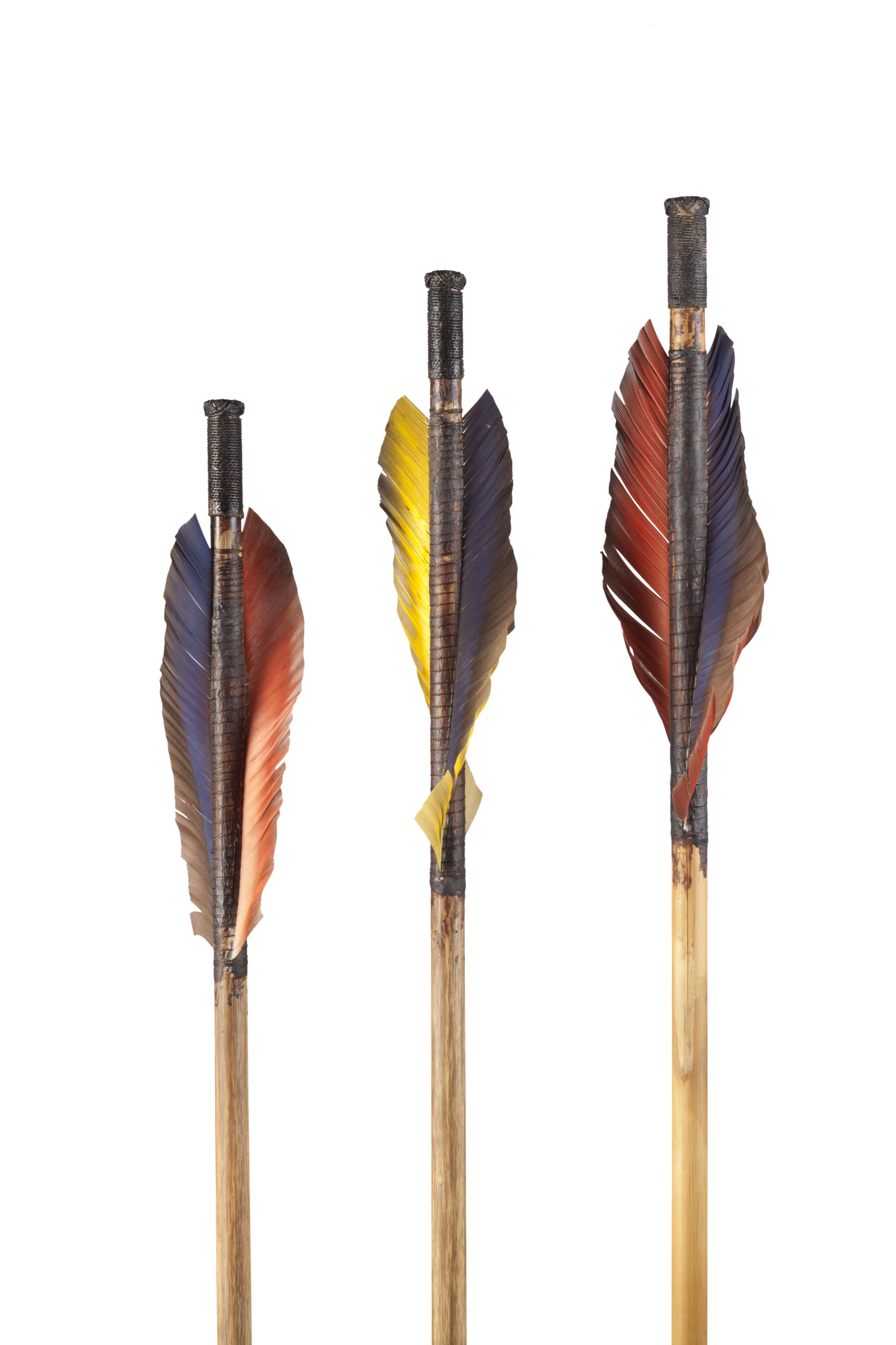 Ese'Eja Arrows